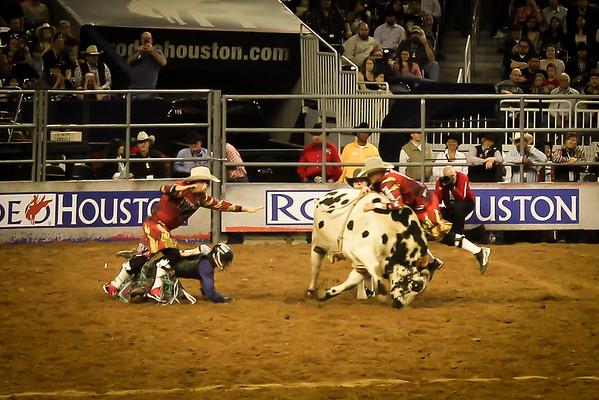 2015-03-04-009 Houston Rodeo