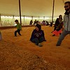 Sever's Fall Festival