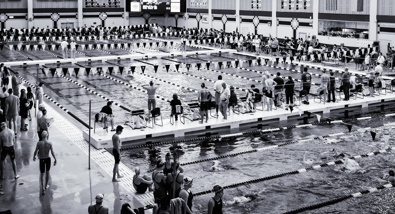 swim--2