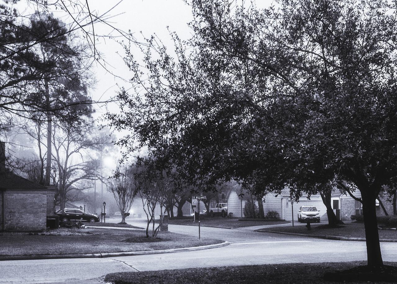 early morning fog-