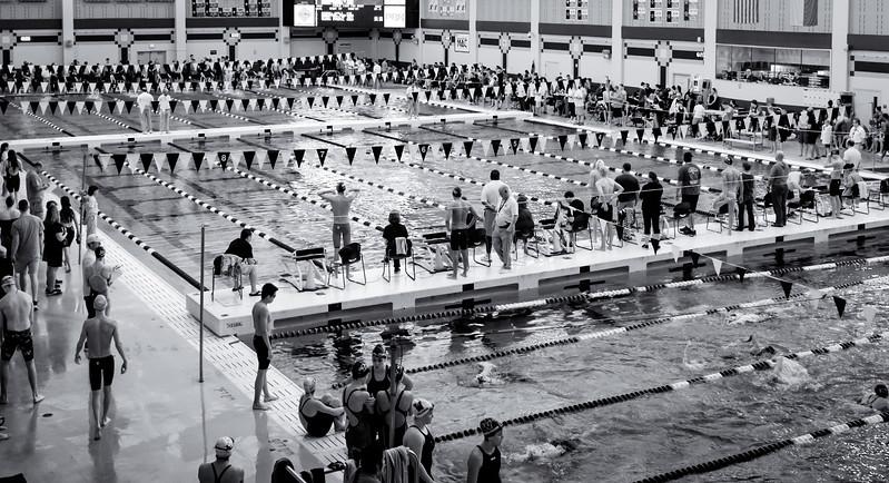 swim-4376