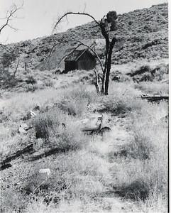 4b - silver city shack