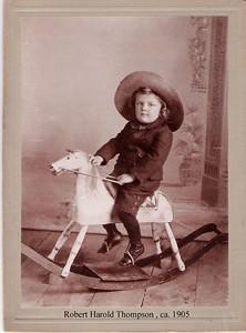 5d - RHT on horseie