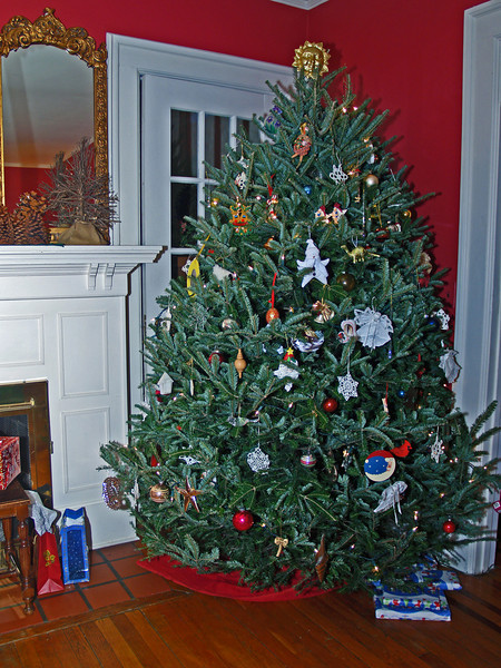 The Yates Christmas tree on Christmas eve 2007
