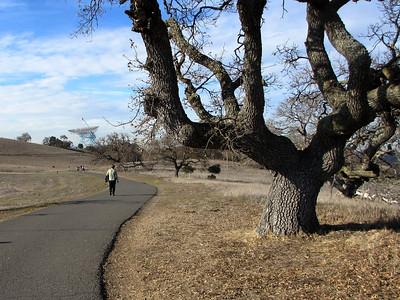 Stanford Hike 12:28:2011 009
