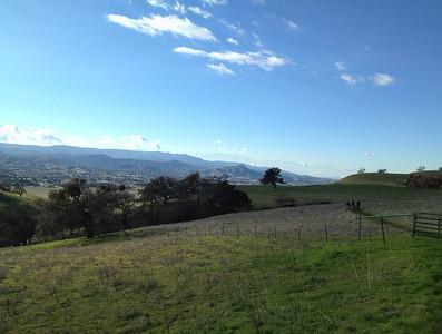 Bear Ranch 12-30-2012 12