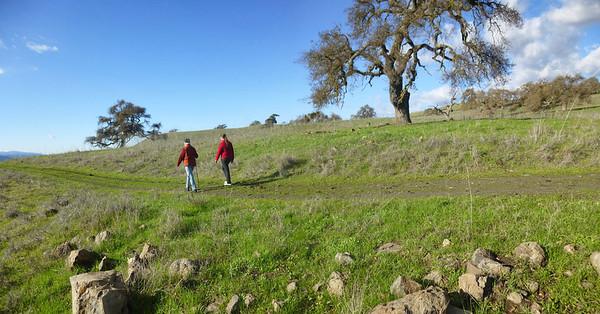 Bear Ranch 12-30-2012 15