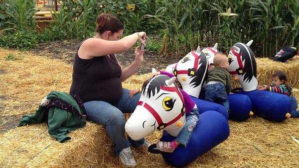 Swank Farm Hollister002