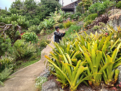Hawaii Summer 2012- 024