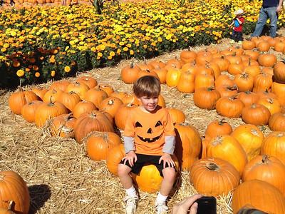 Pumpkin Patch 2013 17