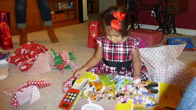 Christmas Day 2014 19