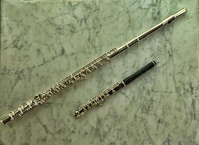 Lori's Flute 7:20154
