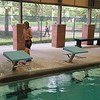 Swimming Lessons, Euphrates with Gideon