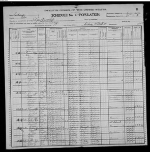 1900 census Owen family Indiana
