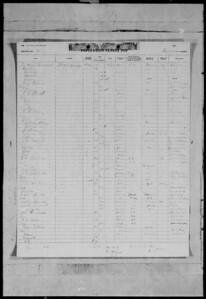 1935 florida census- high springs smith mcall family