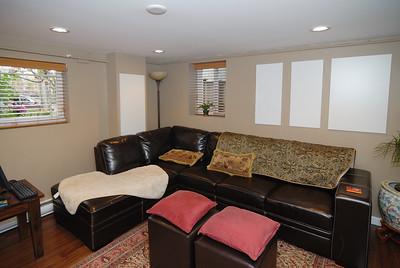 Basement living room - northeast