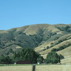 Rolling Hills along Pacheco Pass... home isn't far away from here!! Vacation June 2010