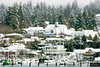 2009-03-15_Snow_Poulsbo 37 Diffuse Glow Christmas Card