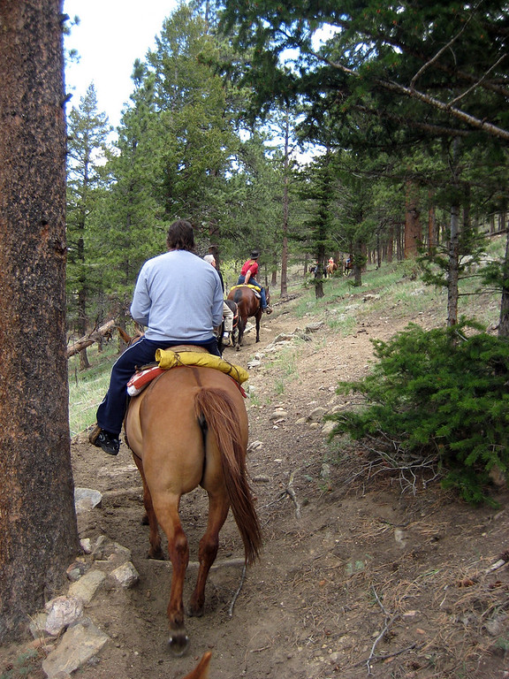 colorado trip, my horse tried to brush me off on the tree on the left