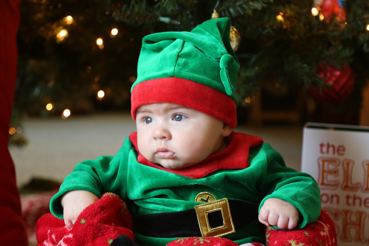 Tate Cobb 3 Month Christmas-0892