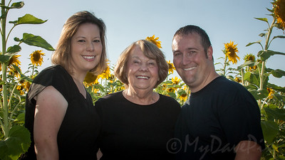 Miller_Sunflowers_A-13