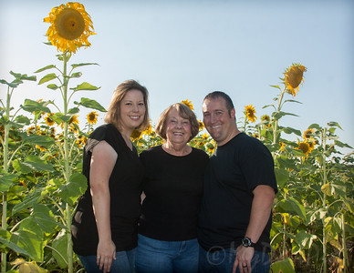 Miller_Sunflowers_A-11