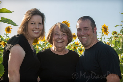 Miller_Sunflowers_A-14
