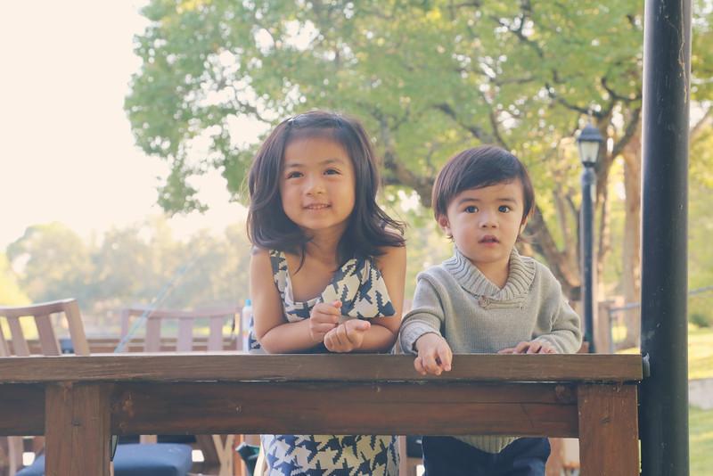 Pham-Nguyen Family 2014-20