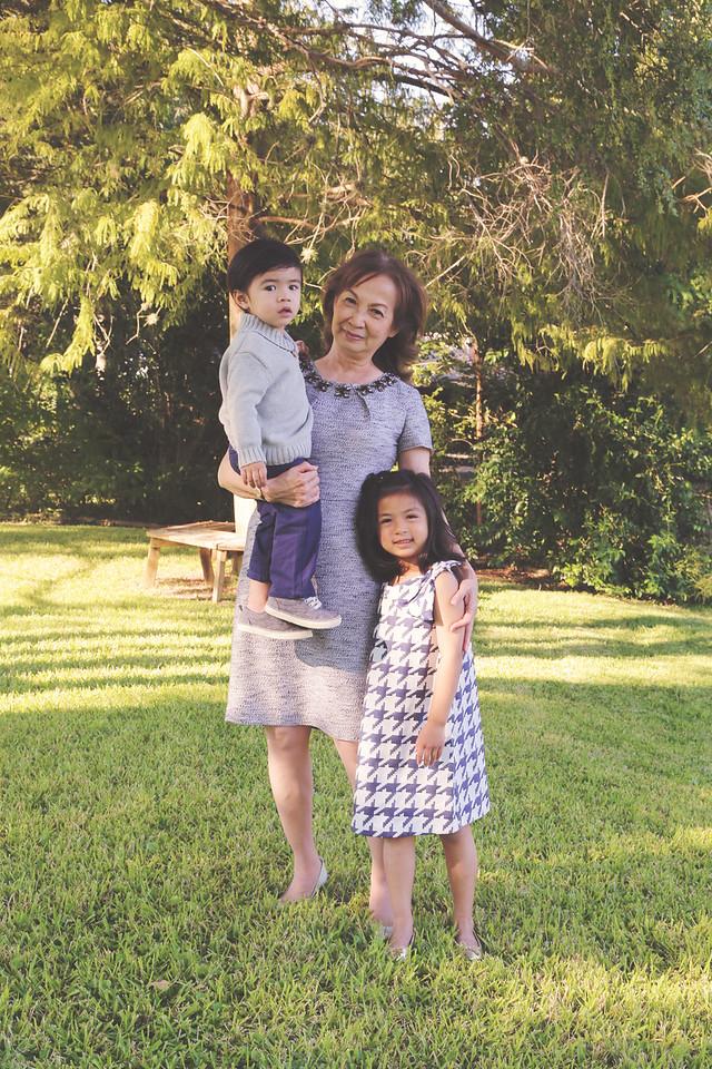 Pham-Nguyen Family 2014-16