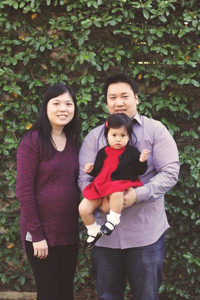 Tsai Family Fall 2014-1