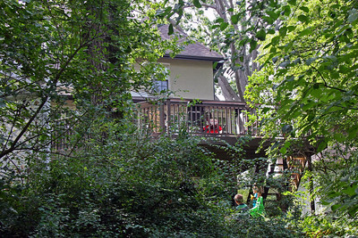 View of Paul's house in Toronto from backyard ravine.