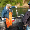 5.14.13  Fishing on the Clackamas River