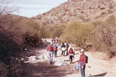 1981 Sabino Canyon