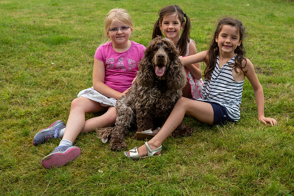 The Girls & The Spaniels