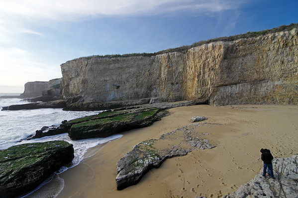 The Mystery Spot & Bonny Doon Beach, 2/19/2012