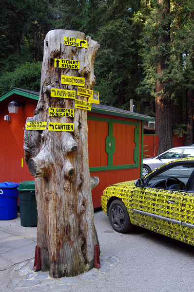 Directions upon entering the Mystery Spot.