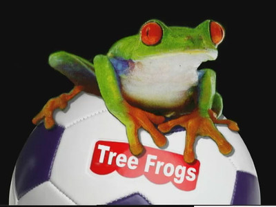 Video for Sydney's soccer team (the Tree Frogs).
