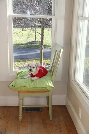 BB's throne