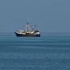 Shrimp Boat_MG_1807