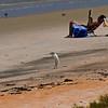 Beach Crane_MG_1836