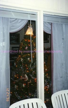 96.12.24 Tree4