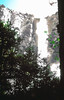 Sept 1978, Bridalveil Falls, Yosemite