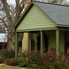 green house-2938