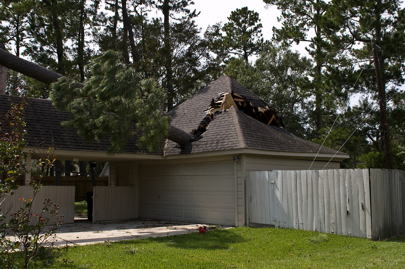 Damage in the subdivision.  The tree went all the way through the garage.
