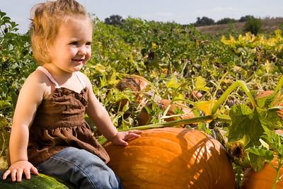 Pretty in pumpkins