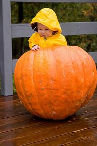 Offical pumpkin inspector