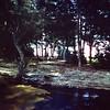 1970 Camping (3)