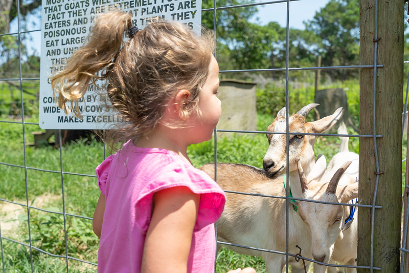Torah Visits Legare Farms