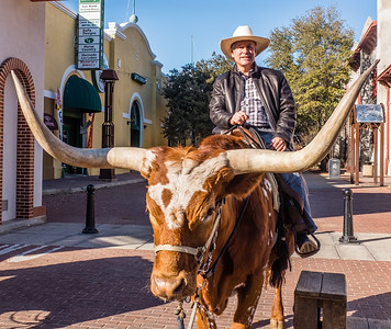 Crusing in local style, Fort Worth Stockyards.