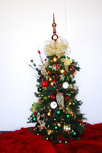 DSC_0020auciton xmas tree